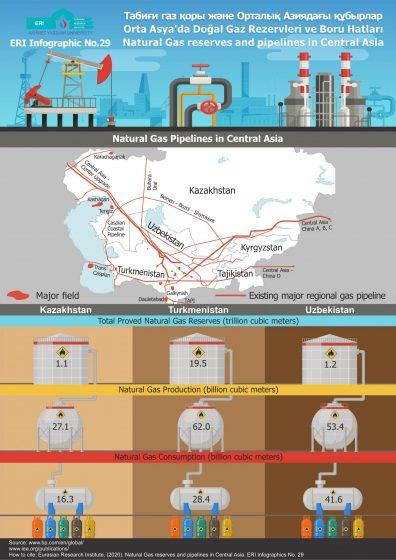 Infographic 29
